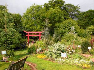 The Dilston Physic Garden